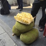 Enorme durian dans la rue