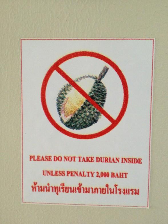 http://www.avocado.fr/wp-content/uploads/2012/11/durian4-588x784.jpg